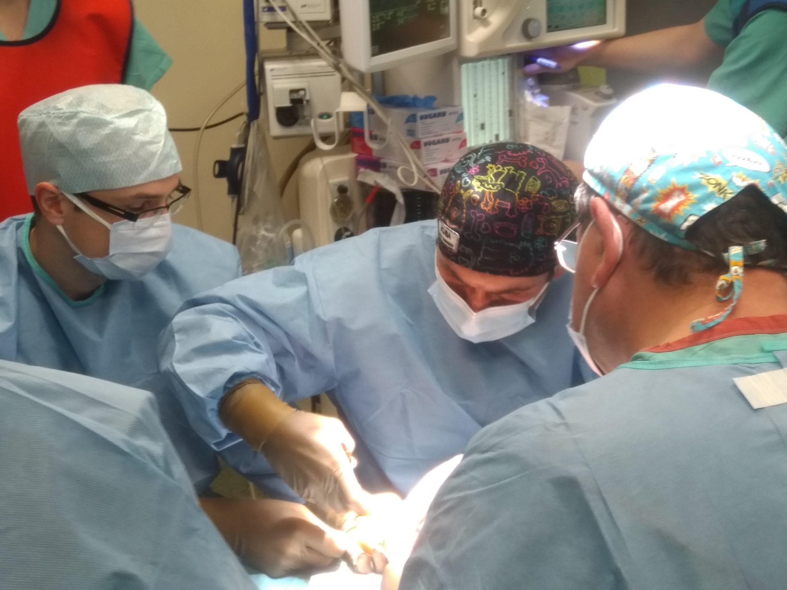 operacja - zespół ortopedów w trakcie operacji